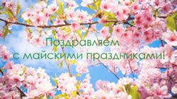 График работы на майские праздники 2017 г.
