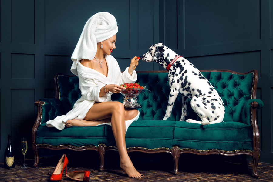 Нежная девушка кормит далматина